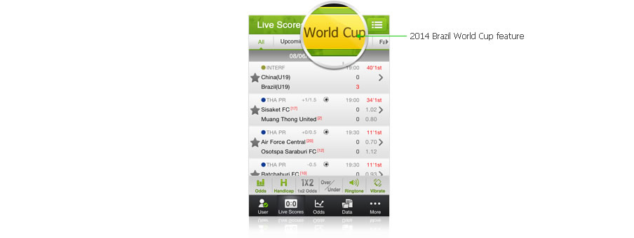 Quick view of the World Cup games